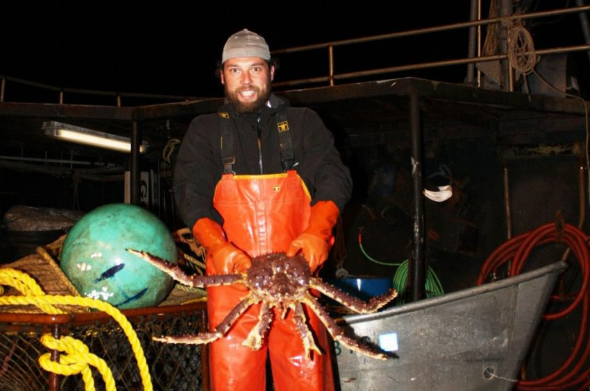 Deadliest catch - King crab (Alaska)